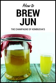 Jun – Honey and Green Tea Alternative to Kombucha