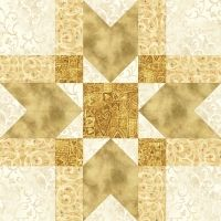 Navajo Star Quilt Block pattern $3.49 on Pam's Club at http://pamsclub.com/main-store-menu/13-e-patterns-pdf/24-blocks-for-all-occasions/380-navajo-star