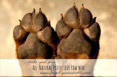 How to Make Your Own All-Natural Protective Paw Wax for Dogs & Cats (Homemade natural balm to protect paws)