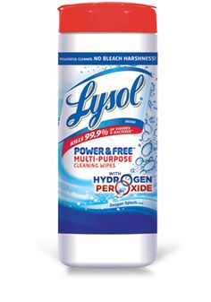 Lysol $3 Check Rebate ~ Still Available!