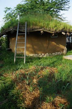 The north side of the cob house, with living roof in full spring bloom - Cob House For Sale: Features: 100% cob construction,  200 open square feet of living space, plus small mud room/air-lock, reciprocal living roof with skylight, terracota tile floor, earthen and lime plaster interior, built-in cob shelving, chimney hook-up available for wood stove, wired for telephone [...] - http://www.small-scale.net/yearofmud/natural-homes-for-sale/