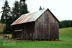 Rustic Photograph Barn Farm Field Cow Trees Rural Green Brown Gray Grey Blue 16x24 Large Wall Decor on Etsy, $95.00