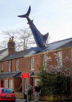 Crazy statues--The Headington Shark, Oxford, England