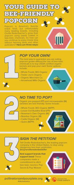 Your Guide to Bee-Friendly Popcorn Popcorn is America's favorite snack food, but unfortunately many leading brands, including Orville Redenbacher's, grow their popcorn using seeds coated in bee-toxic chemicals. So how can you continue to enjoy movie time without harming bees and other pollinators? Here are three ways: 1.Pop Your Own! The best way to guarantee you are eating popcorn grown without the use of bee-toxic chemicals is to buy USDA certified organic kernels and pop your own! Some…