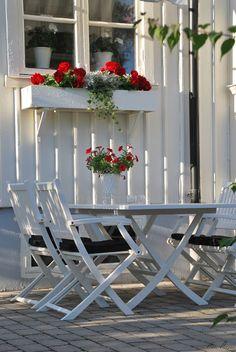 Vitt hus med vita knutar: Tillbakablick...