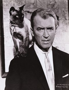 Cat on the Shoulder of James Stewart
