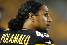 troy polamalu wallpaper: Wallpapers Collection, Kennard Gill 2016-02-20