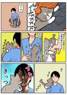 Cat Comics, Japanese Culture, Peanuts Comics, Cartoon, Manga, Cats, Illustration, Funny, Anime