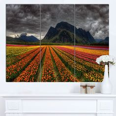 Designart 'Beautiful Colored Tulips Panorama' Landscape Wall Art Print Canvas