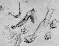 Study of male hands and arms  Albrecht Durer