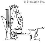Workout Routines for Bowflex Exercises Use this page to browse through workout routines made for Bowflex exercises. Select from the following: The list of bowflex exercises is organized by the main muscle group each targets: Abs Back Chest Legs Shoulders Arms Workout Routine for Abs This workout routine works great if you are pursuing 6-pack …