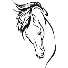 Image result for how to draw a horse head step by step