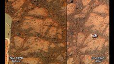 Scientist sues NASA, alleges it's failing to investigate alien life on Mars 2