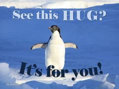 Be Sure to Send a Big, Virtual Hug to Your Friend Today! Big Hugs For You, Hug You, When Your Best Friend, Best Friends, Amazing Friends, Online Friends, Penguin Meme, Penguins And Polar Bears, Biology Classroom