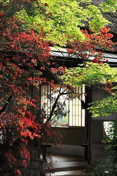 Japanese traditional residence. Always loved those.