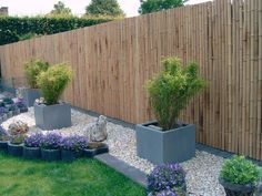 5 Jolting Useful Ideas: Horizontal Fence With Lattice cute garden fencing.Fence Door How To Build bamboo fencing courtyards. Bamboo Garden Fences, Bamboo Privacy Fence, Backyard Fences, Backyard Landscaping, Privacy Fences, Pool Fence, Brick Fence, Front Yard Fence, Small Fence