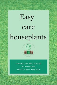 This blog looks at personal preferences and choices along with time commitment to help you choose the best houseplants for yourself. #houseplants #easytocarehouseplants #choosinghouseplants