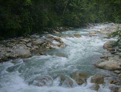 Río Siniguí. Barinas-Venezuela