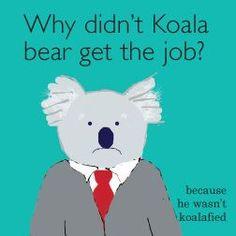 koala bear joke and illustration