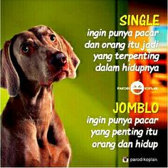 Single vs jomblo