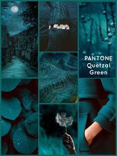 PANTONE Quetzal Green…what a gorgeous dark teal - Alles über Dekoration Colour Schemes, Color Trends, Color Combos, Graphisches Design, House Design, Design Trends, Teal Colors, Teal Green Color, Gold Colour