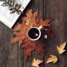 Our favorite things about Fall: tea, changing leaves, and curling up with a good book. Autumn Cozy, Autumn Tea, Autumn Coffee, Autumn Fall, Autumn Feeling, Hello Autumn, Autumn Photography, Autumn Aesthetic Photography, Book Photography