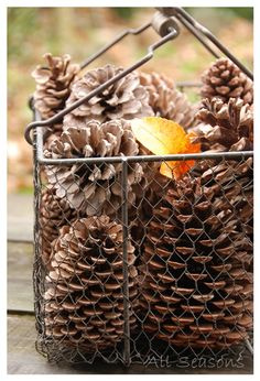 Basket of fine examples of pine cones Deco Noel Nature, Deco Table Noel, Autumn Cozy, Seasons Of The Year, Wire Baskets, Autumn Garden, Hello Autumn, Fall Harvest, Autumn Inspiration