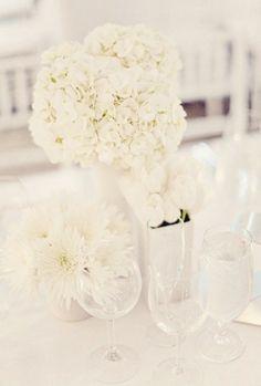 La floraison chargée de l'hortensia