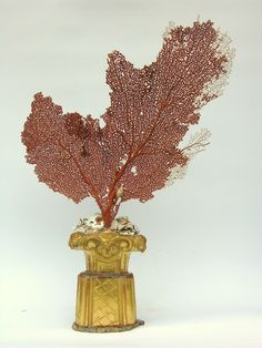 18th century Italian fragment candlestick decorated with polished fossil agate coral and a Mediterranean sea fan.