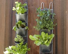 Attractive And Modern Vertical Garden Design With Succulent Planter Modern Outdoor Pots And Planters Outdoor Planters, Flower Planters, Garden Planters, Outdoor Gardens, Planter Pots, Herb Garden, Vertical Garden Design, Outdoor Play Spaces, Modern Outdoor Furniture