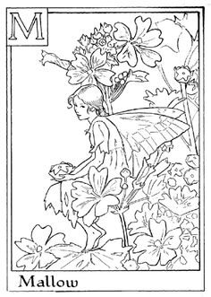 Letter M For Mallow Flower Fairy Coloring Page - Alphabet Coloring Pages, Alphabet Flower Fairies On do Coloring Pages