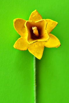 Paper Flowers Tutorial: Egg Carton Daffodils. Use Nature of Arts non-toxic paint for kids for this fun project!