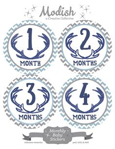 FREE GIFT, Month Stickers, Woodland, Baby Boy, Deer Antlers, Monthly Onesie Stickers, Monthly Baby Stickers, Chevron, Navy Blue, Gray, Grey