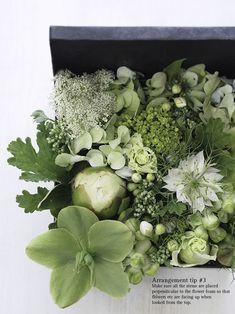 Baum-Kuchen: A gift of fresh green!