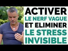 Nerf Vague, Stress, Youtube, The Nerve, Herbalism, Naturopathy, Yoga Meditation, Exercises, Psychological Stress