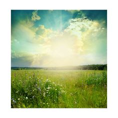 Green Meadow Under Blue Sky With Clouds Art Print at AllPosters.com