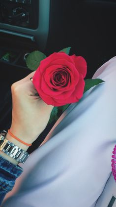 black rose images for whatsapp dp