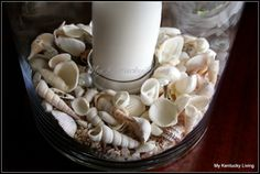Using shells in your decor... My Kentucky Living