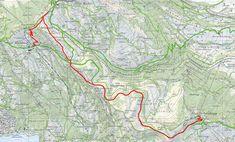 Die Königin der Schweizer Berge - die Rigi - ist das perfekte Ausflugsziel für Gross und Klein.