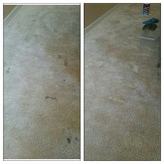 I think too many of these carpet cleaner pins don't show the actual results!  This is one part dawn dish soap and two parts hydrogen peroxide. I scrubbed it in to the carpet with a toothbrush, dabbed with a wet cloth and blotted until almost dry. I'm so surprised at how quickly the stain came out!