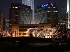 Christmas Light Tours Omaha Ne