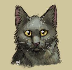 Stormfur by Cat-Patrisiya.deviantart.com on @DeviantArt
