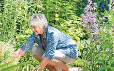 Our gardening expert solves your problems. This week: a caterpillar invasion   and deadheading flowers