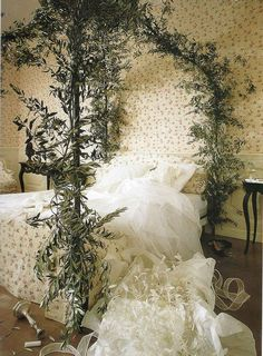 Stunning Green Plant Of Fairytale Bed