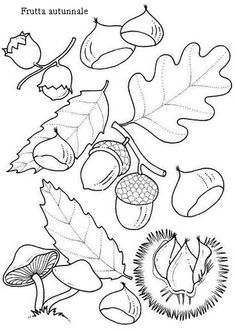 coloring page Leaves on Kids-n-Fun. Coloring pages of Leaves on Kids-n-Fun. More than coloring pages. At Kids-n-Fun you will always find the nicest coloring pages first! Free Printable Coloring Pages, Coloring Book Pages, Coloring Pages For Kids, Coloring Sheets, Summer Crafts, Fall Crafts, Gland, Leaf Coloring, Autumn Activities