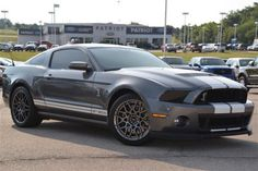 Ford Mustang Shelby Gt500, Ford Mustang For Sale, Used Ford, Ford Mustangs, Cute Cars, Car Car, Yachts, Jets, Dream Cars