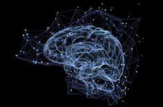 oils found to halt neuroinflammation that leads to Alzheimer's disease Magnesium Vorteile, Magnesium Benefits, Honey Benefits, Magnesium Deficiency, Health Benefits, Gamify Your Life, Binaural Beats, Train Your Brain, Brain Waves