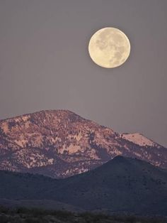 Photographic Print: Full Moon Setting over Snow-Covered Magdelena Mountains at Socorro, New Mexico, USA by Larry Ditto : 24x18in
