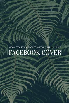 How to Stand Out with a Brilliant Facebook Cover Photo