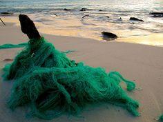 Marine debris - fishing net on, almost, an unspoilt beach